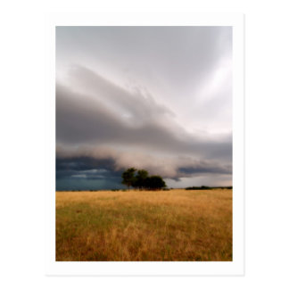 Oklahoma Storm Postcard
