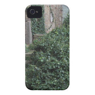 Old abandoned country homestead in the woods iPhone 4 Case-Mate case