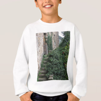 Old abandoned country homestead in the woods sweatshirt