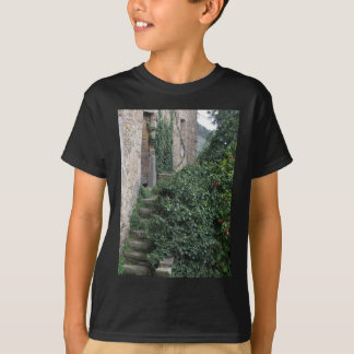 Old abandoned country homestead in the woods T-Shirt