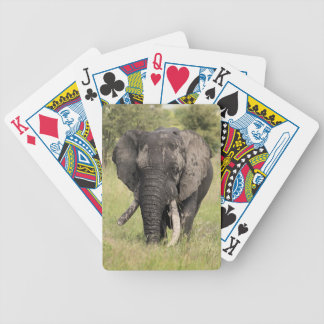 Old African elephant bull - broken tusk (Africa) Deck Of Cards