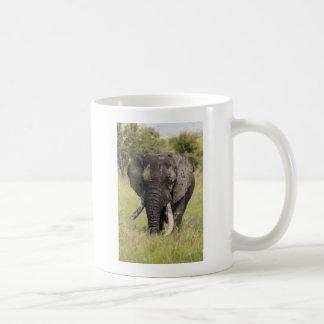 Old African elephant bull - broken tusk (Africa) Classic White Coffee Mug
