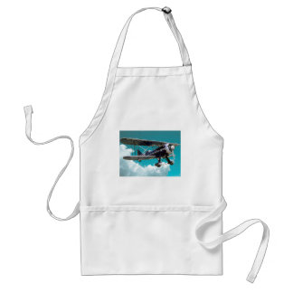 Old Airplane Standard Apron