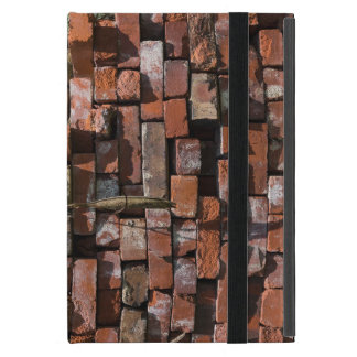 Old Bricks Abstract Cover For iPad Mini