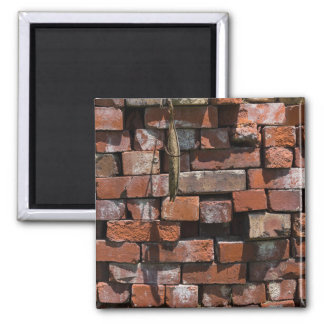 Old Bricks Abstract Magnet