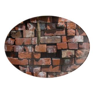 Old Bricks Abstract Porcelain Serving Platter