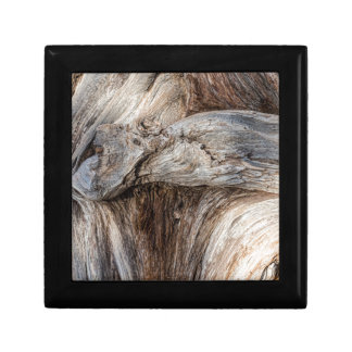 Old Canyon Tree Texture Gift Box