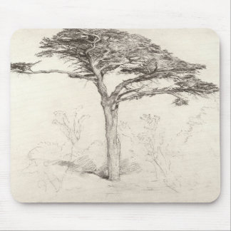 Old Cedar Tree in Botanic Garden, Chelsea, 1854 (p Mouse Pad