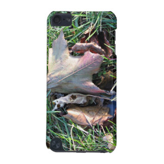 Old dead leaf on grass iPod touch (5th generation) covers