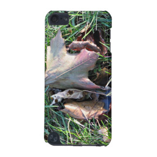 Old dead leaf on grass iPod touch 5G cases
