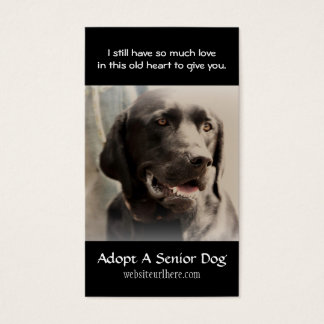 Old Dog  Animal Rescue Business Card