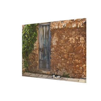 Old door and resting cat stretched canvas print