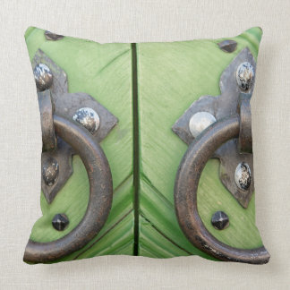 Old door cushion