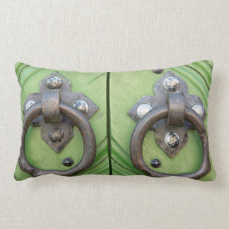 Old door lumbar cushion