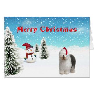 Old english Sheepdog Christmas Card