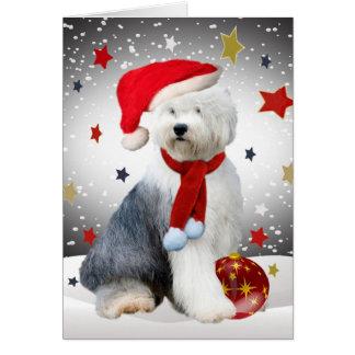 Old English Sheepdog Christmas Stars Card