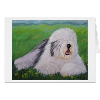 Old English Sheepdog Greeting Card By Sharon Numme