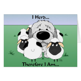 Old English Sheepdog - I Herd Therefore I Am Card