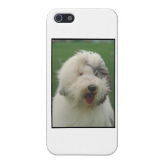 Old English Sheepdog iPhone 5/5S Cover