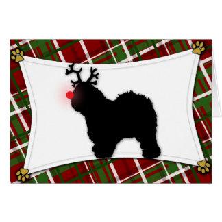 Old English Sheepdog Reindeer Christmas Card