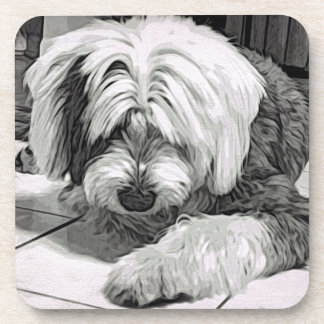 """Old English Sheepdog """"What's That? Coaster"""