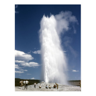 Old Faithful 1948 Postcard