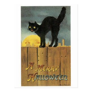 Old-fashioned Halloween, Black cat & Full moon Postcard