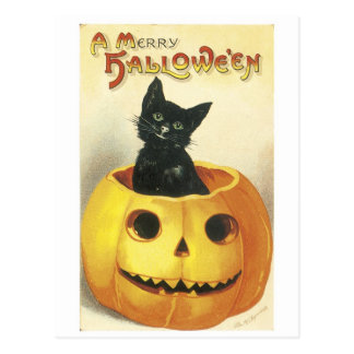 Old-fashioned Halloween Jack-o'-lantern, Black cat Postcard