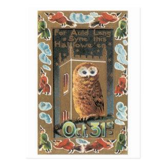 Old-fashioned Halloween, Owl Postcard