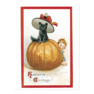 Old-fashioned Halloween, Witch cat Postcard