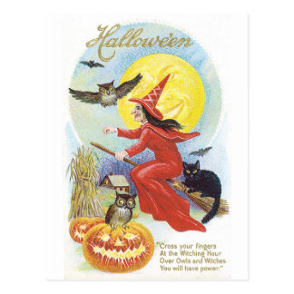Old-fashioned Halloween, Witch & Owl Postcard