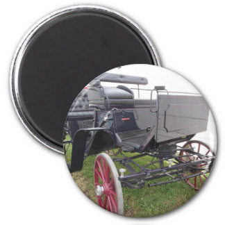 Old-fashioned horse carriage on green grass magnet