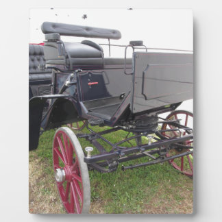 Old-fashioned horse carriage on green grass plaque