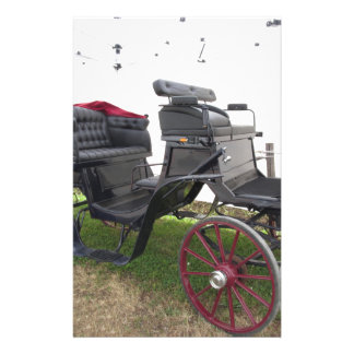 Old-fashioned horse carriage on green grass stationery