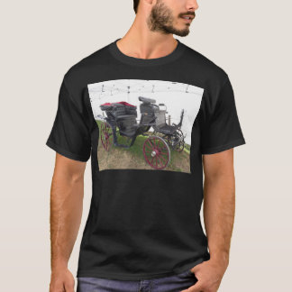 Old-fashioned horse carriage on green grass T-Shirt