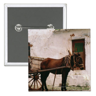 Old-fashioned horse-drawn cart button
