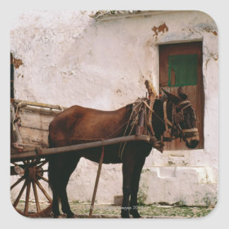 Old-fashioned horse-drawn cart square sticker