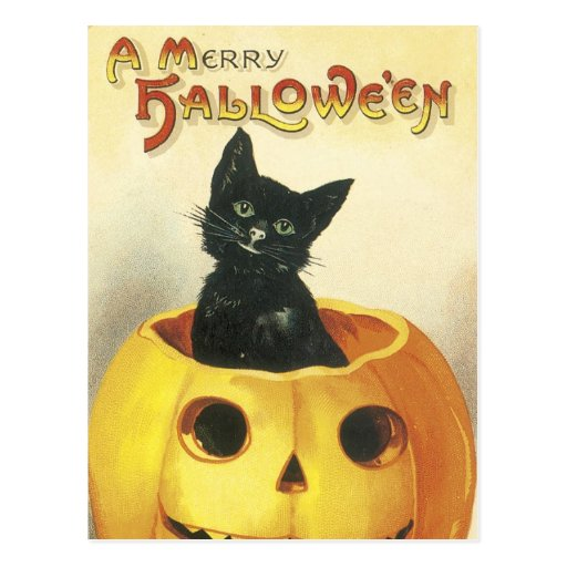 Old Fashioned Merry Halloween Cat Post Card