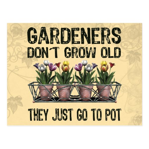 Old Gardeners Post Cards