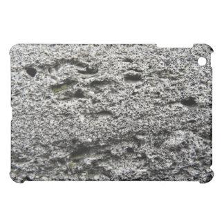 Old Gray stone Texture iPad Mini Covers