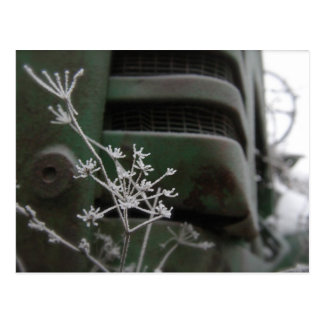 Old Green Tractor Grill with Frozen Flower Postcard