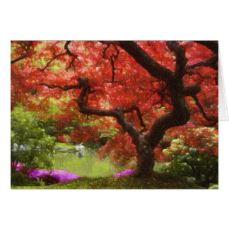 Old Japanese Maple Greeting Card