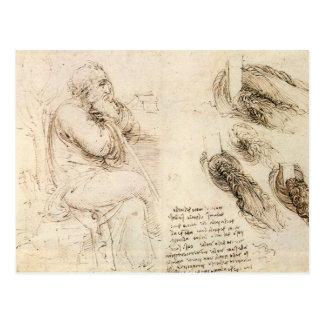 Old Man and Water Sketch by Leonardo da Vinci Postcard