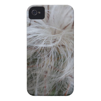 Old Man Cactus iPhone 4 Covers