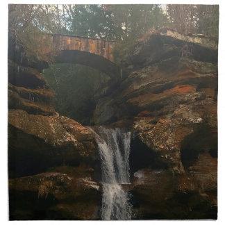 Old Mans Cave Upper Falls Ohio Napkin