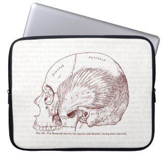 Old Medical Drawing Temporal Muscle Laptop Sleeves