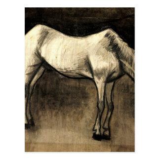 Old Nag by Vincent van Gogh Postcard