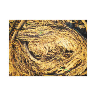Old nets and ropes canvas print