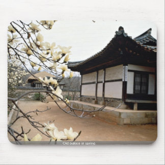 Old palace in spring mouse pads