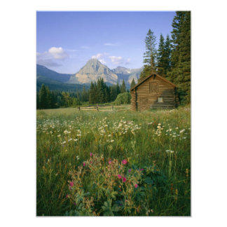 Old Park Service cabin in the Cut Bank Valley Art Photo
